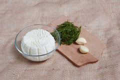 Curd with casinogam and dill Royalty Free Stock Photo