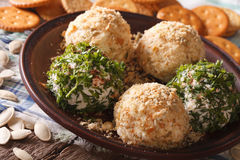 Curd cheese balls with crackers, herbs and pumpkin seeds macro. Royalty Free Stock Images