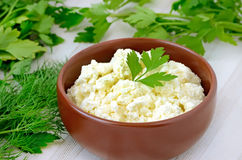 Curd cheese in the bowl Royalty Free Stock Photo