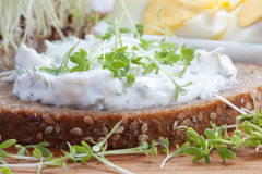 Curd cheese with cress on bread Royalty Free Stock Images