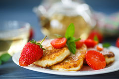 Curd cheese pancakes fried Stock Photography