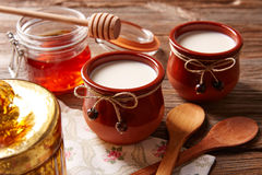 Curd dairy dessert with honey. On wooden table Stock Photography