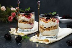 Curd dessert with blackberries and cookies in glass on a dark background stock photography