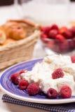 Curd dessert with fresh raspberries Stock Image