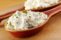Curd with herbs Royalty Free Stock Photography