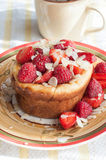Curd pudding with berries honey and almonds. Raspberry Cheesecake with strawberry, raspberry honey and almond Stock Image