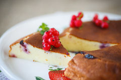Curd pudding with berries Stock Photography
