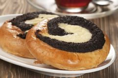 Curd tarts with poppy seeds Stock Images