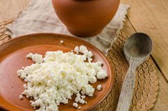 Curds on the brown plate Royalty Free Stock Photo