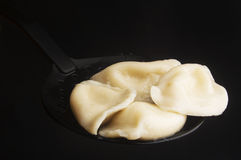 Curds dumplings Royalty Free Stock Image