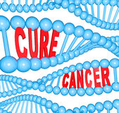 Cure Cancer Words in DNA Strands Medical Research Stock Photo