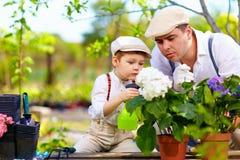 Cure della famiglia per le piante nel giardino di primavera Immagini Stock