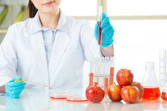 This is the cure for human of genetic modification Royalty Free Stock Photo