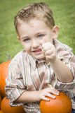 Cure Young Child Boy Enjoying the Pumpkin Patch. Stock Photography