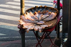 Cured fish on a street Stock Images