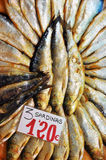Cured sardines. A typical component of Mediterranean diet ... salt cured sardines at a Spanish market Royalty Free Stock Photos