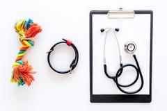 Curi gli strumenti per il gatto dell'animale domestico ed il cane con i giocattoli, stetoscopio per il trattamento nell'insieme g Immagini Stock