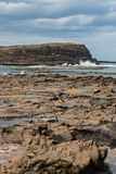 Curio Bay in Catlins at low tide. Curio Bay in Catlins in New Zealand at low tide Stock Image