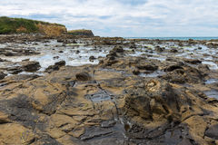 Curio Bay, the Catlins New Zealand Royalty Free Stock Images