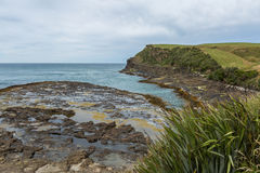 Curio Bay, the Catlins New Zealand Royalty Free Stock Image