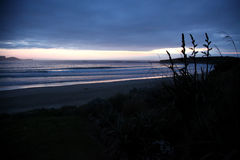 Curio Bay, Catlins, New Zealand Stock Images