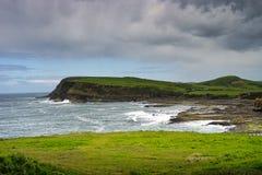 Curio Bay New Zealand. Shoreline at petrified forest - Curio Bay New Zealand South island Stock Photos