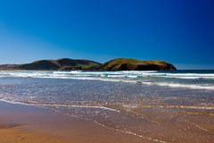 Curio Bay, South Coast of New Zealand South Island Stock Photo