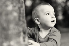 Curios little boy Royalty Free Stock Photography