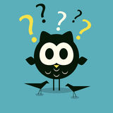 Curios owl background Stock Photography
