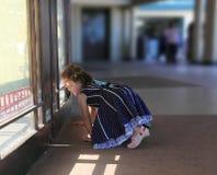 Curiosity. Kids peeking through the concert hall window Royalty Free Stock Photography