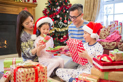 Curiosity at Christmas Time Royalty Free Stock Photos