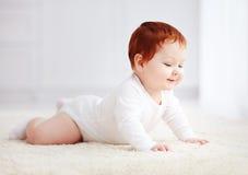 Curioso, nueve meses del bebé que se arrastra en la alfombra en casa Imagen de archivo