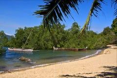 curioso sia laguna e linea costiera di pietra della palma della barca del ramo della roccia Fotografie Stock Libere da Diritti