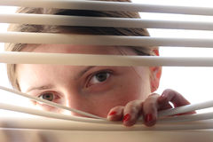 Curious. Girl looking through roller-blind Stock Photography