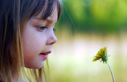 Curious. A little cute girl looking on dandelion, focus on the girl Stock Photo