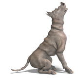 Curious alien dog with rhino skin and horn. 3D rendering with clipping path and shadow over white Royalty Free Stock Photography