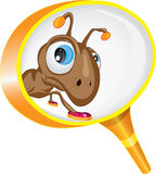 Curious ant looking through a magnifying glass Stock Images