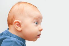 Curious Baby Royalty Free Stock Photo