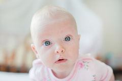 Curious baby girl looks at the camera Stock Photography