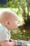 Curious Baby Outdoors. A baby outside looking with wonder at the world around royalty free stock image