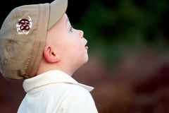 Curious Boy Royalty Free Stock Photo