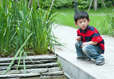 Curious boy. The curious boy discovered that in the water has the interesting thing Stock Image
