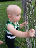 Curious Boy Looking Through Fence Royalty Free Stock Images