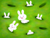 Curious bunnies. Cute white bunnies curiously looking out of holes in the ground Stock Image