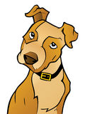 Curious Cartoon Dog. This is a cartoon illustration of a curious puppy vector illustration