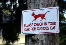 Curious Cat. A sign on the Big Island of Hawaii warns guests to check their cars for a curious cat royalty free stock photo