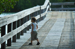 Curious child. Looks over edge of pier Royalty Free Stock Image