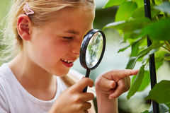 Curious child explores with loupe. Curious child explores nature and looks at leaf with loupe stock image