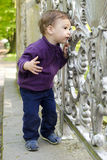 Curious child at gate. Curious child toddler, boy or girl, looking through an ornamental fence or gate royalty free stock photos
