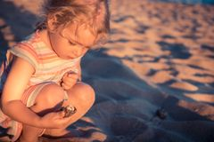 Curious child girl toddler portrait playing on beach with hermit crab during summer vacation concept childhood lifestyle stock photo